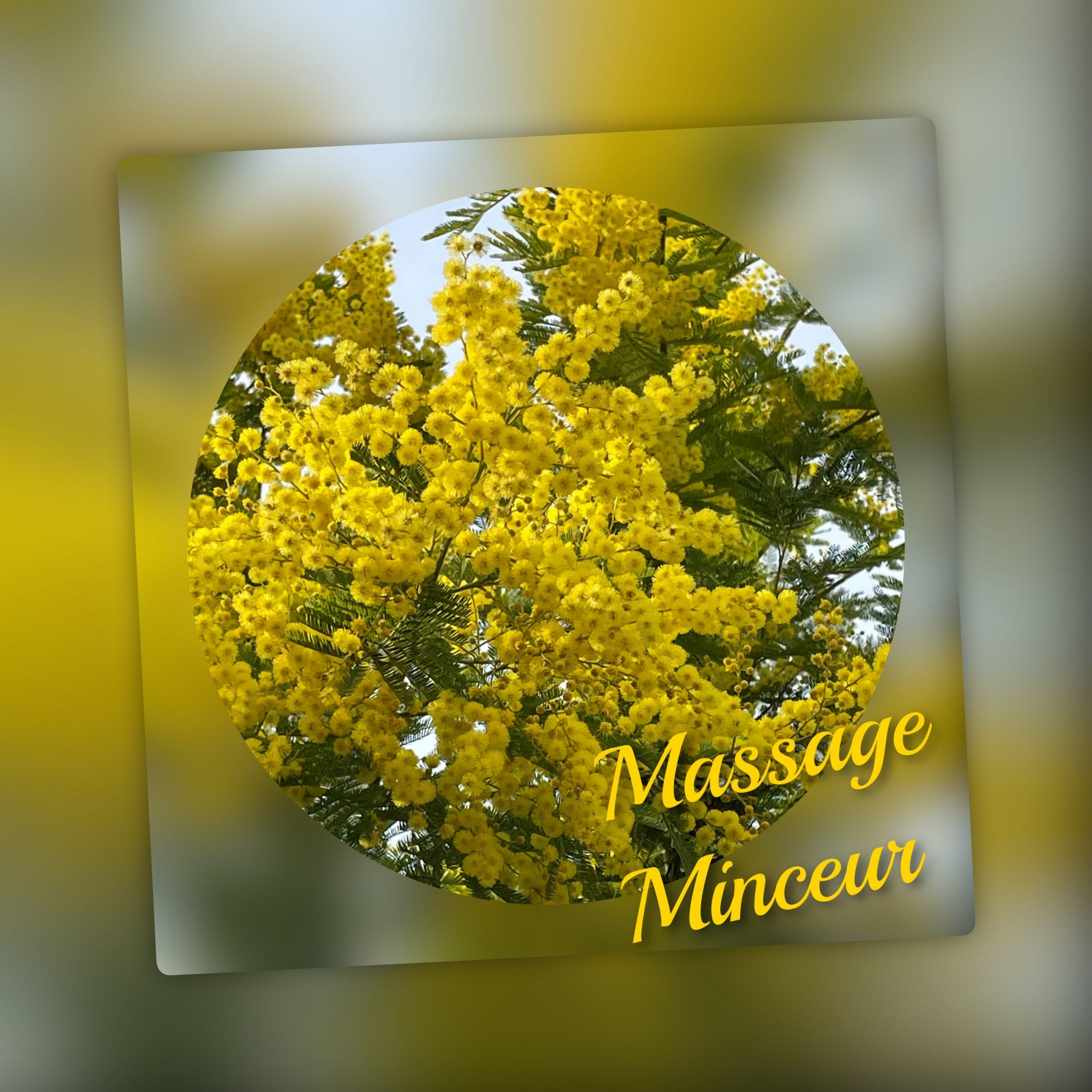 image massage minceur